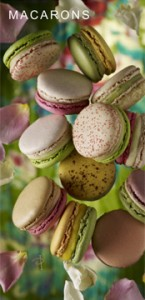 174X360-MACARONS_UK